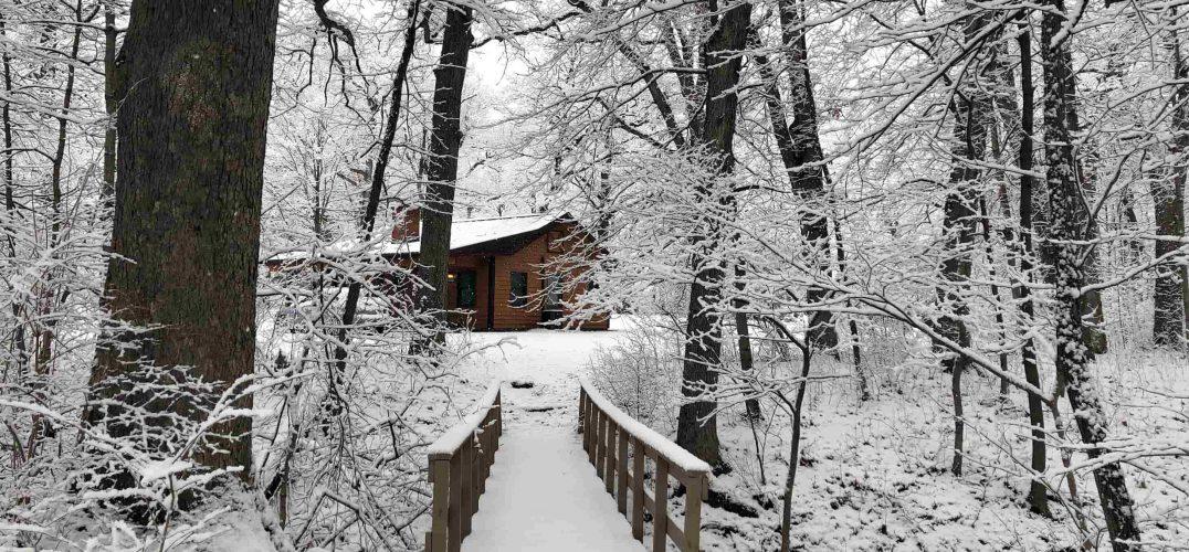 Bridge Cabin in Winter