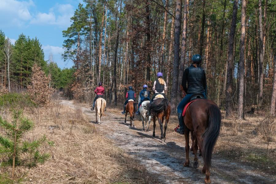 Horseback riding at Starved Rock State Park