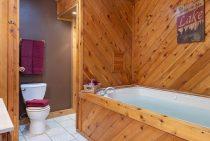 Apache Cabin bathroom - a rustic Illinois cabin