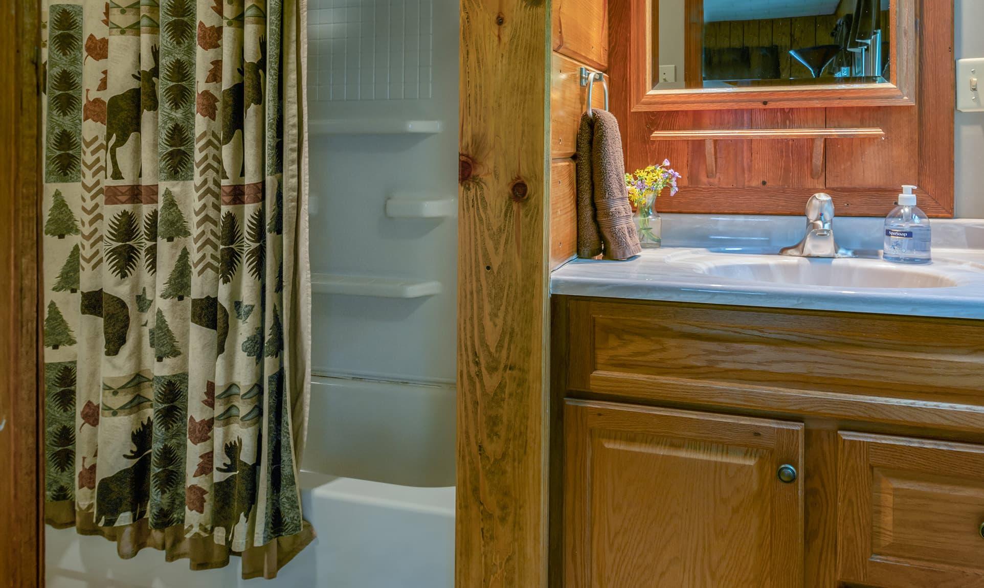 Bridge Cabin bathroom - romantic accommodations near Starved Rock