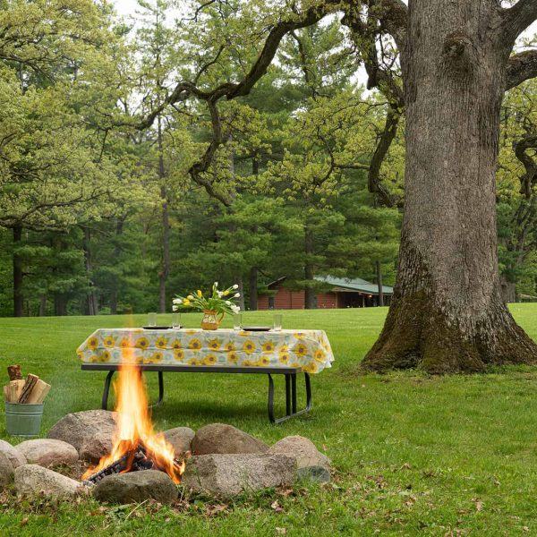 Campfire and Picnic Table