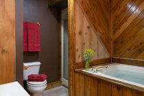 Osage Cabin bathroom - weekend getaway near Chicago