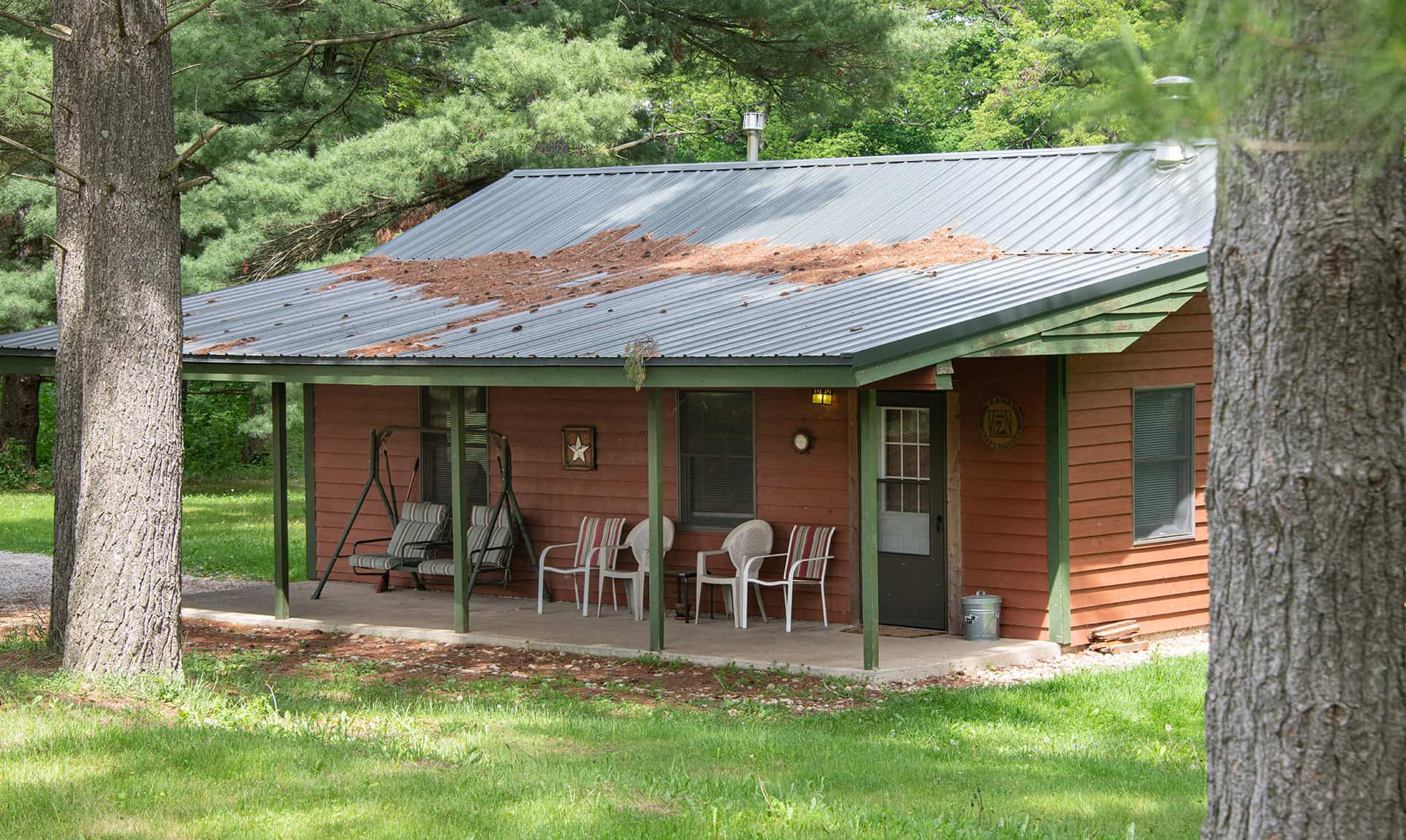 Zonta Cabin - pet-friendly cabin near Matthiessen State Park